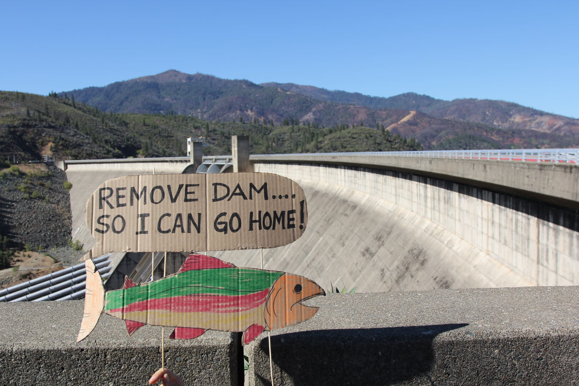 A sign at Shasta Dam